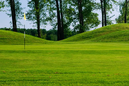 Golf field with nice green, flag and trees in background