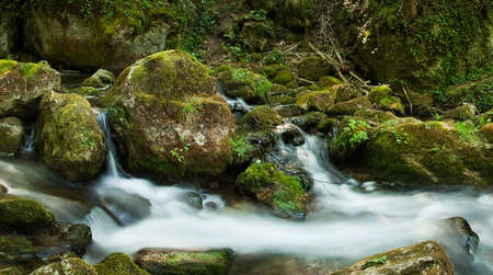 Cascade with mossy rocks in forest of temperate zone (Central Europe) Stock Photo