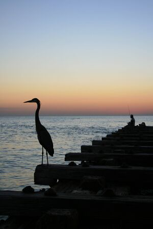 Pier Fishing Silhouette