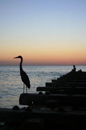 Pier Fishing Silhouette