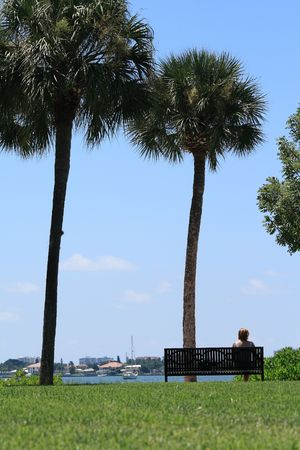 Woman relaxing on a bench by the water.  Sailboats and palm trees fill the scene on this beautiful day in south Florida.