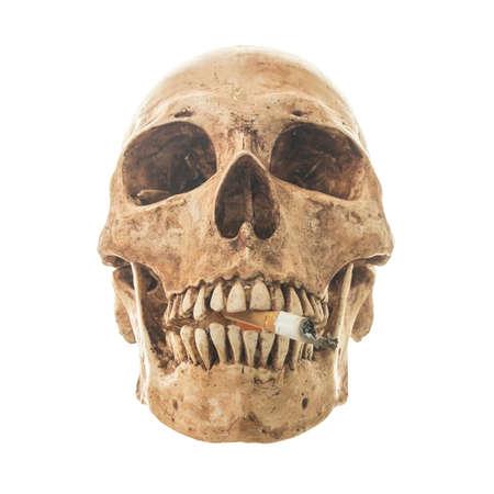 Skull Smoking on a White background photo