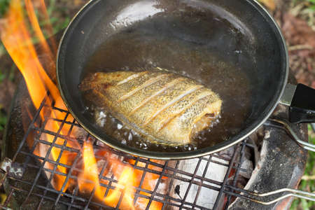 fish fire: cooking fish frying in oil on the fire on camping  in the forest. Stock Photo
