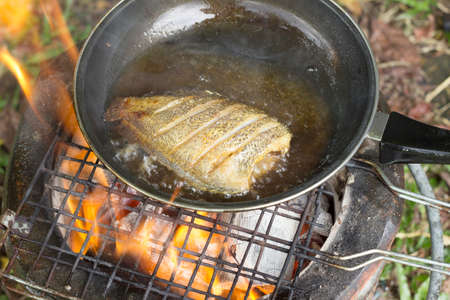 cooking oil: cooking fish frying in oil on the fire on camping  in the forest. Stock Photo