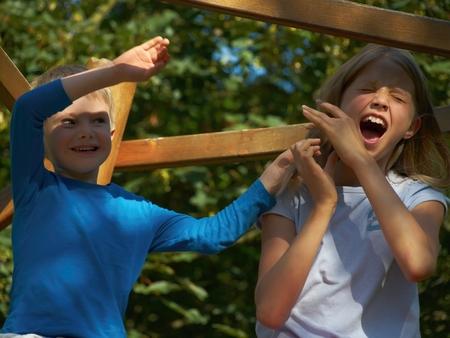 climbing frame: Fratelli che combattono sulla cornice di arrampicata