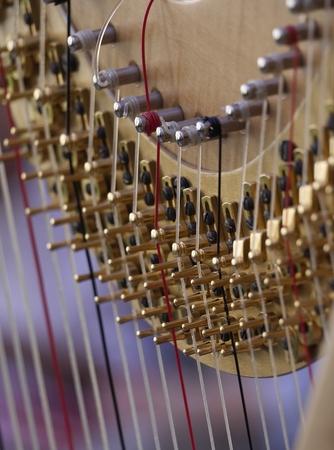 Detail of harp tuning mechanism. Stock Photo