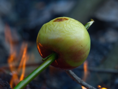 Red green apple, baked on a skewer at the fire Stock Photo