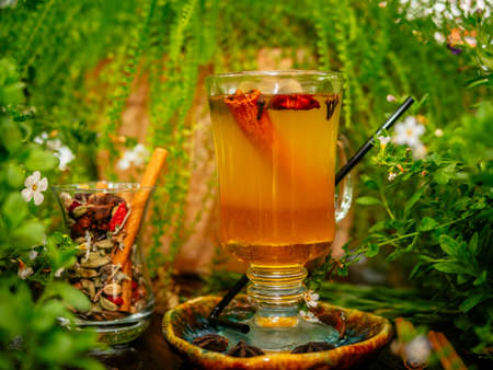 Hot mulled wine in a glass goblet with cinnamon sticks. Vegetation around.