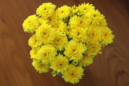 dasiy: Beautiful Yellow Flower  ,dasiy