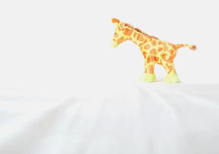 Cute giraffe standing on white fabric bed Stock Photo