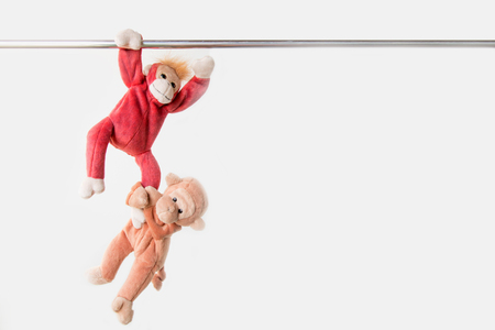 Two little monkeys hang the bar by his hand to exercise at outdoor playground Stock Photo