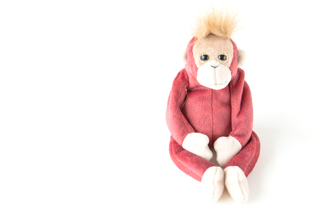 little monkey with white background
