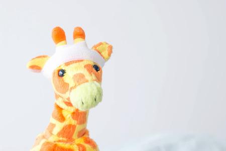 Giraffe with trauma of the head ,Giraffe �ve got a headache so he was admitted to the hospital . Stock Photo