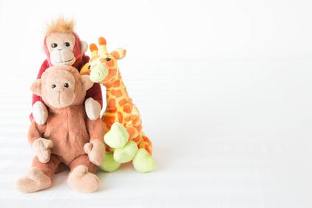 The gang animal is friend ,Two monkeys and Giraffe is best friend Stock Photo