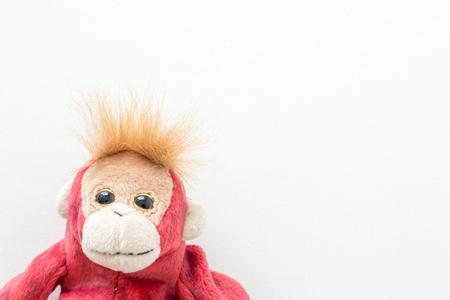 Little red monkey on white background Stock Photo - 76968637