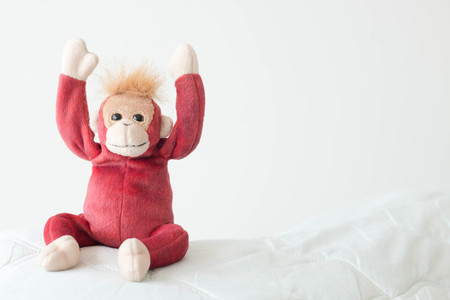 Red monkey  happy feel  with smiling Stock Photo