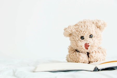 The teddy bear with books that is he would like to read for exam ,The diary is good memory