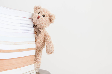 The teddy bear with books that is he would like to read for exam