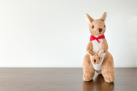 and two friends: Kangaroo toys