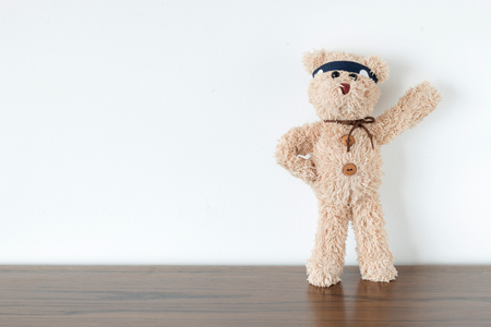 Teddy bear is fighting for new work,new project