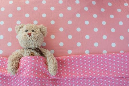 Teddy Bear lying in the bed  Teddy bear