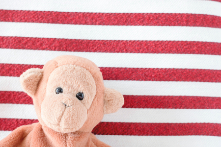 Cute monkey with white and red fabric background Stock Photo
