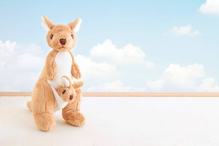 cute kangaroo dolls is stand alone show in front of cloudy sky background