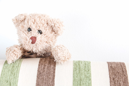 Cute teddy bear with green and brown fabric background
