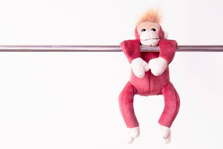 little monkey hang the bar by his hand to exercise at out door playground Stock Photo