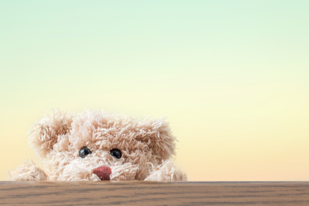 Teddy bear play hide and seek ,happy feeling Stockfoto