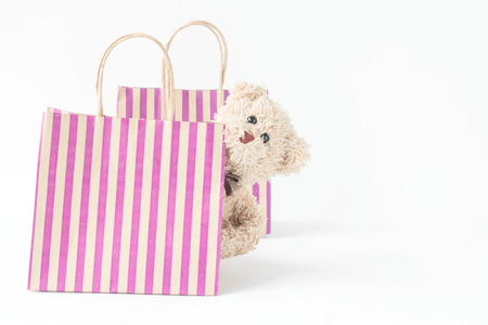 Cute teddy bear with shopping bag in  happy feel