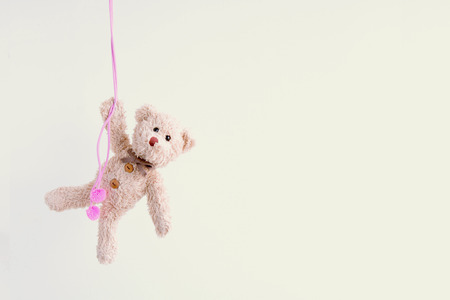 Naughty teddy bear is hanging on the green line,Everywhere the teddy bear is happy Stock Photo