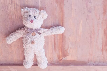 Cute teddy bear is standing look at me with love,Portrait teddy bear
