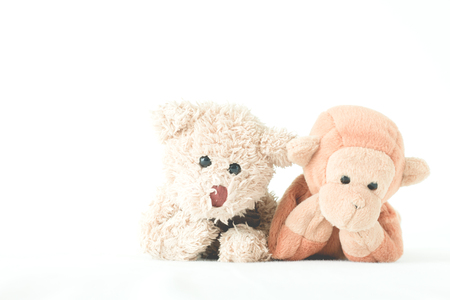 Couple doll in relationship ,Monkey and teddy bear is best friends.Animals couple in love on the white background Stock Photo