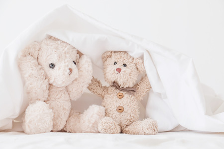 Couple teddy bears is playful in white fabric,Teddy bear play hide and seek with best friend have fun  in the morning .