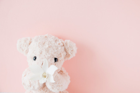 Cute teddy bear holding flowers on pink background
