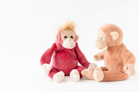 Couple monkey talking sitting in a floor 스톡 콘텐츠