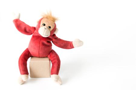 Mono feliz de vacaciones, mono feliz sonrisa alegre y feliz.