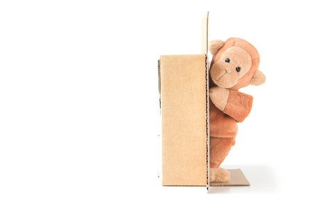 Cute monkey is playing cardboard box