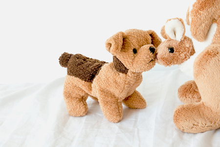 Couple doll in relationship ,Puppy and little kangaroo are best friends.Animal in love on the white background