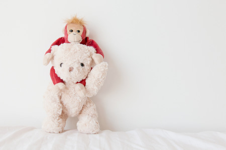 Teddy bear and cute monkey in love, Sweet couple in valentines day