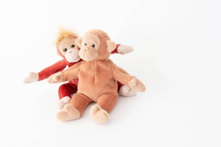 The happy loving couple, Best friends are hugging and lovely monkeys in love mode in Valentine 스톡 콘텐츠