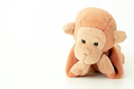 little brown monkey with a white background, He is waiting for someone with a lonely feel.