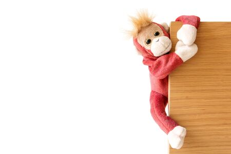 Free Naughty Monkey Amigurumi Pattern – Easy DIY | Crochet ... | 300x450