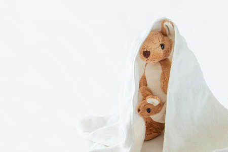 Cute couple mom and baby kangaroo play hide and seek with a bag plastic, Happy feel concept. Stock fotó