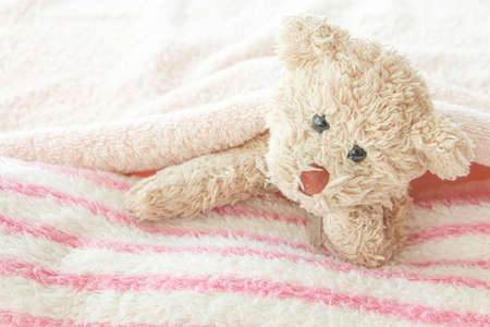 Cute teddy bear play hides and seeks with fabric, Happy feel concept.