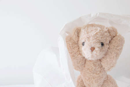 Cute teddy bear play hides and seeks with a bag plastic, Happy feel concept.