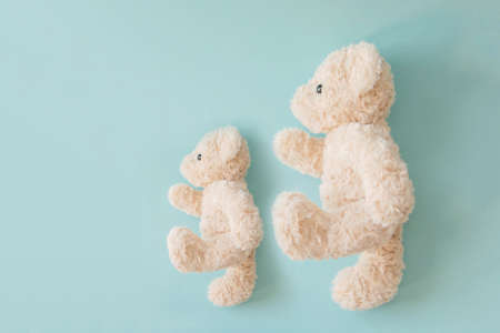 Couple teddy bear in love, Sweet couple doll in Valentine's day