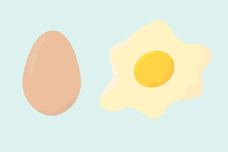 Egg raw and fried vector on pastel background Stock Illustratie