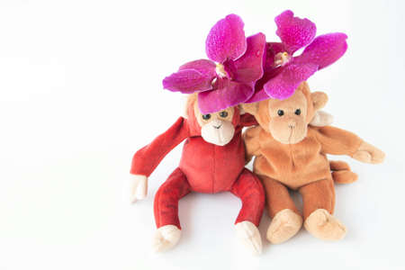 A cute couple of monkey is sitting with fresh orchids flower Stockfoto